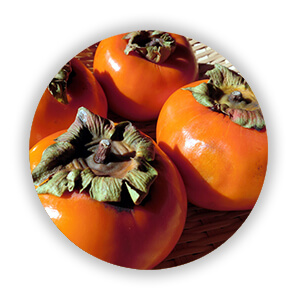 自然栽培の柿
