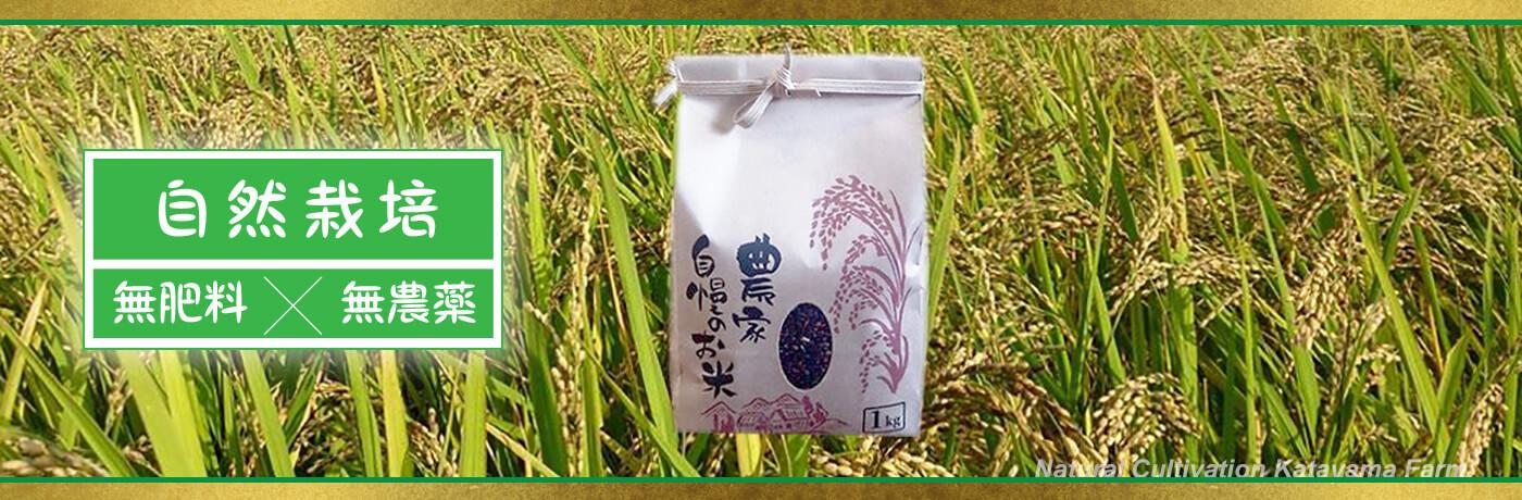 黒米(くろまい)【自然栽培】