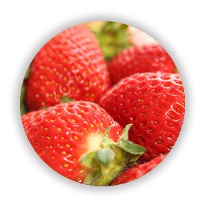 自然栽培 いちご
